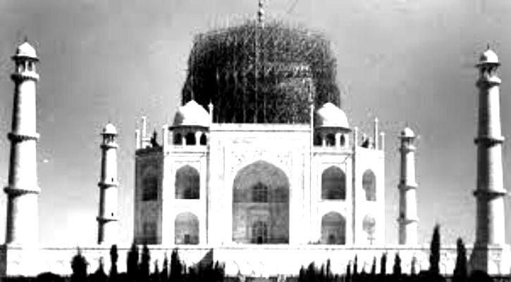Taj Mahal Bamboo Dsiguise