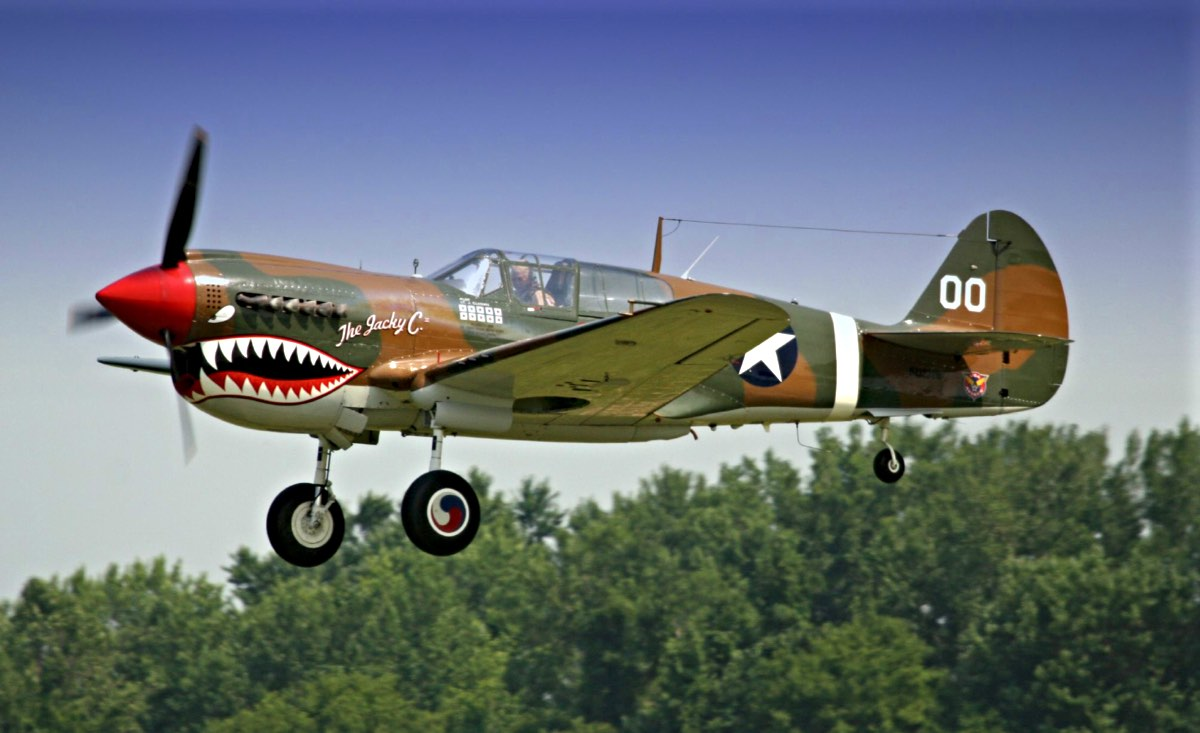 P-40 Warhawk in flight