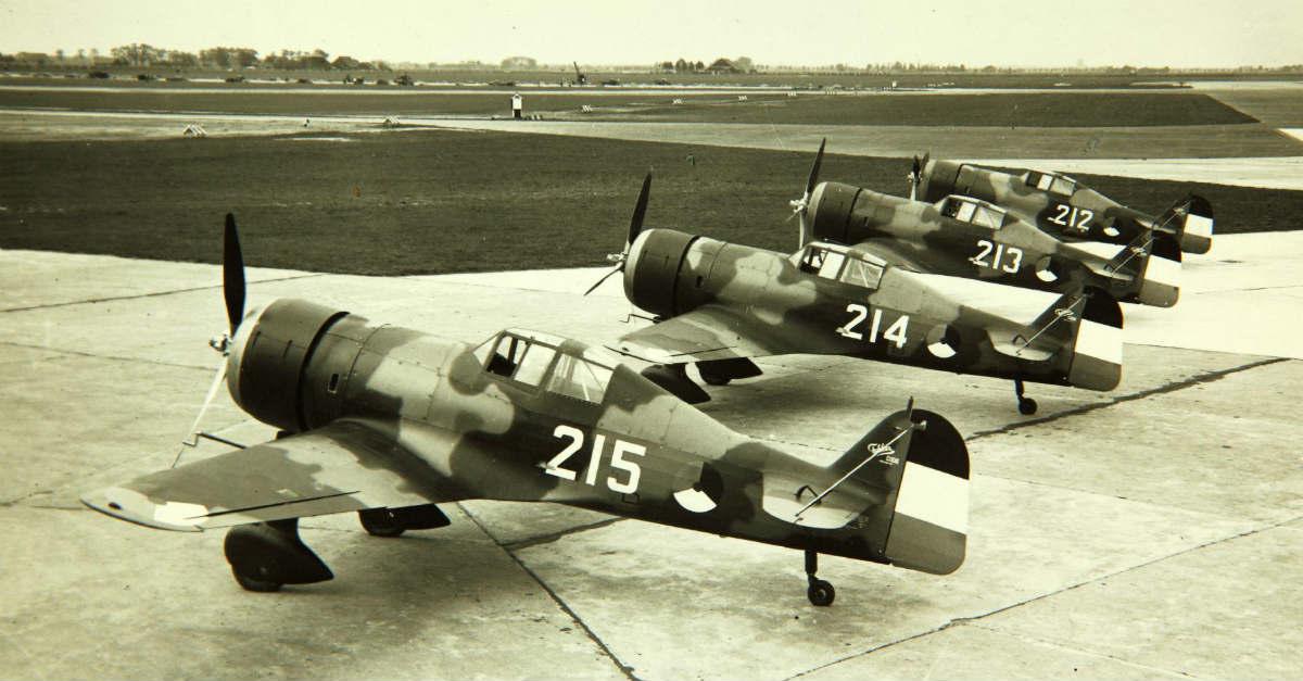 Fokker D.XXI - WW2 Planes