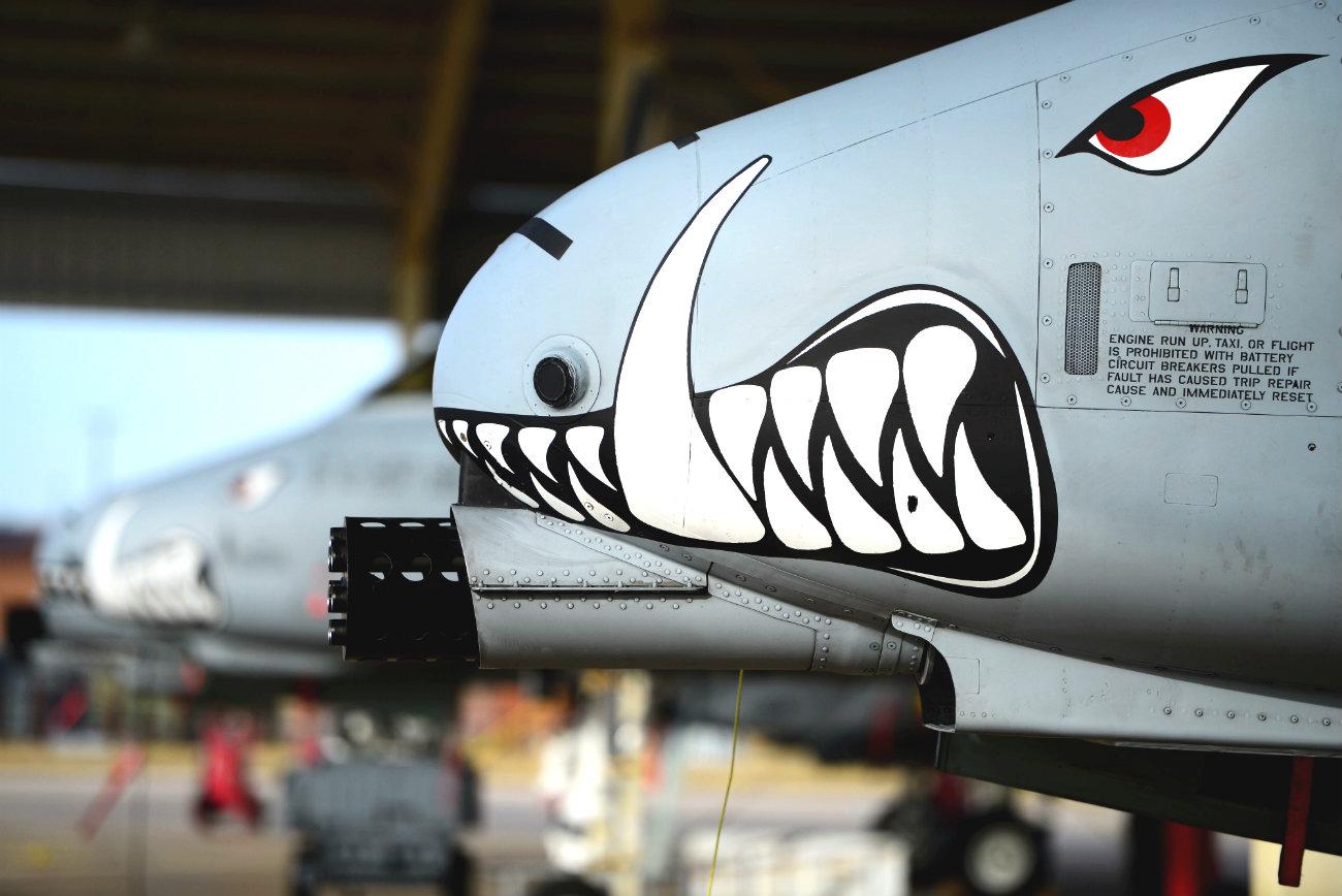 A-10 Aircraft Warhog front