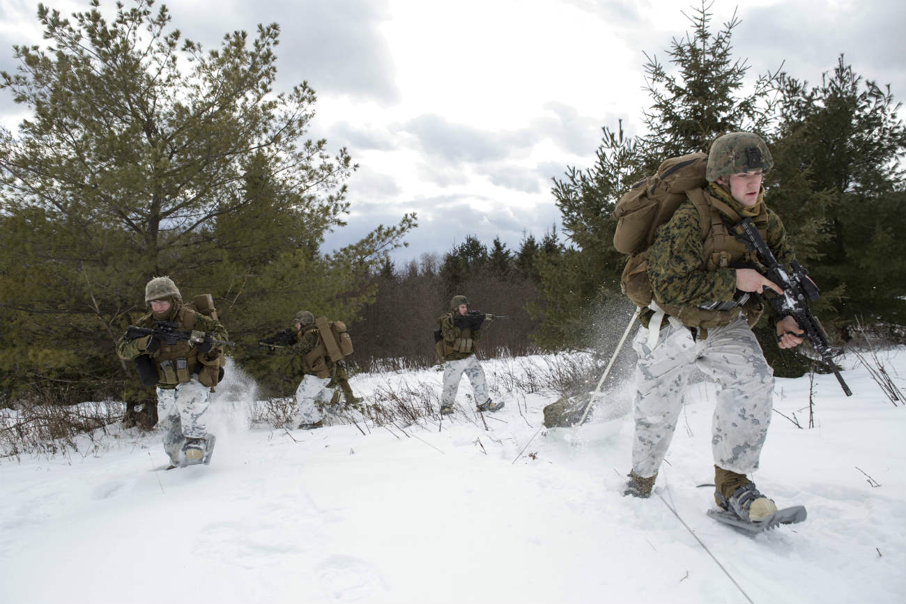 Canadian Armed Forces images through snow