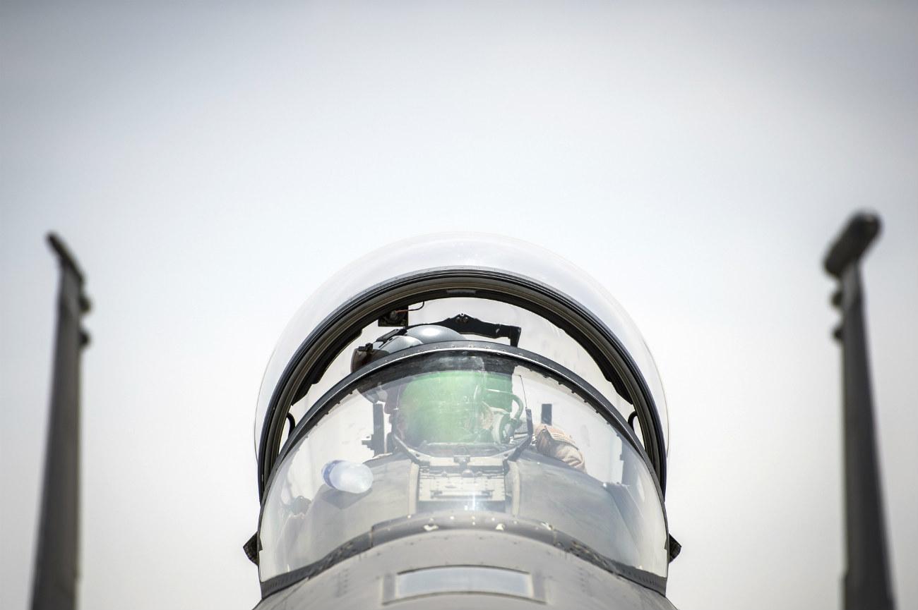 F-15 Eagle Pilot