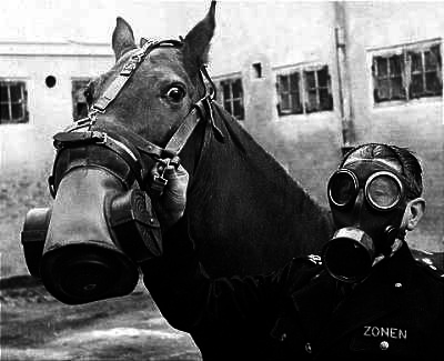 A German Horse in a Gas Mask, World War I