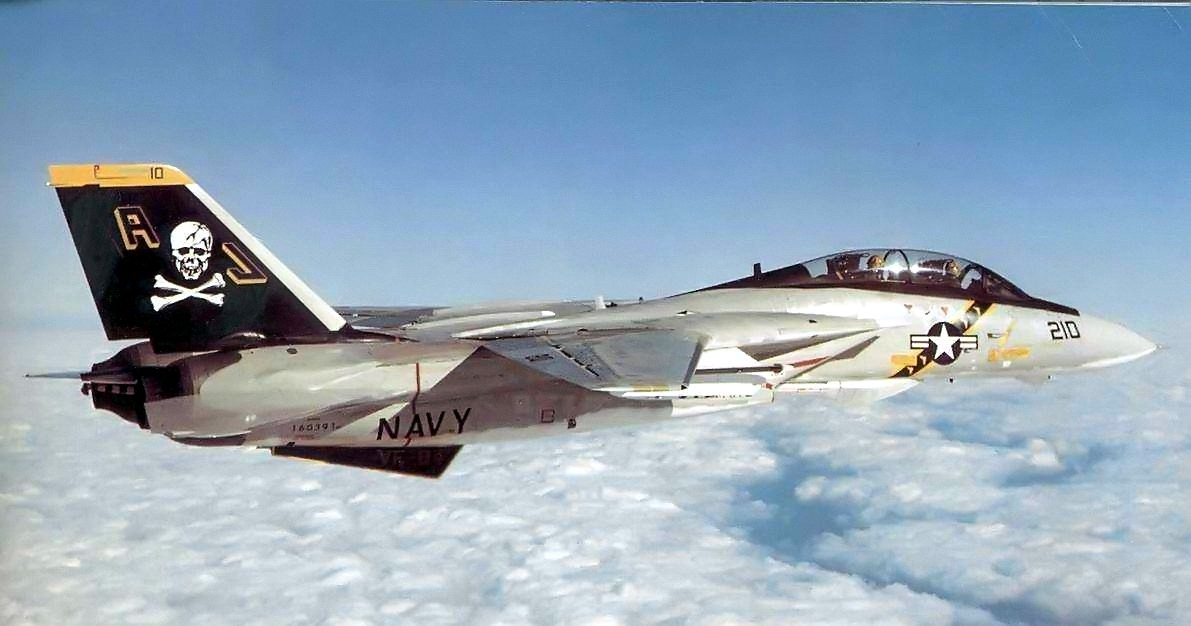 most expensive military jets, F-14